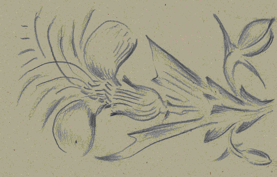 Motyw kwiatowy 10, pastele III 1950